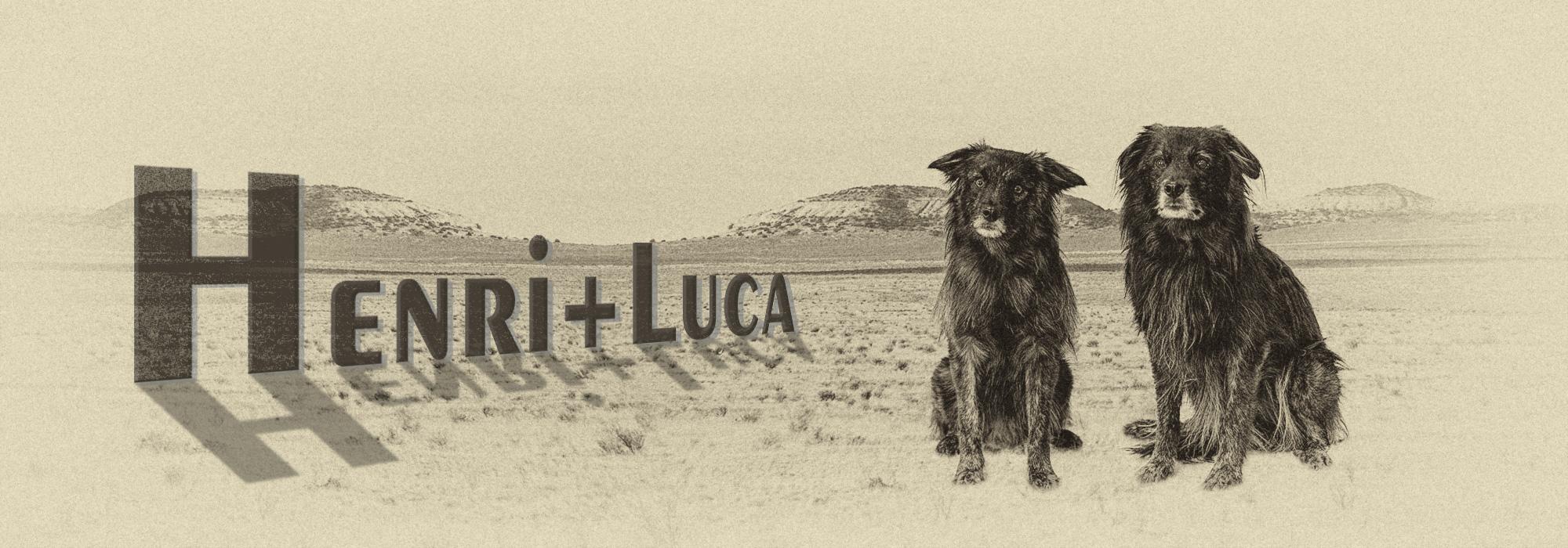 Luca+Henri