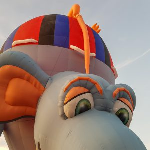 mouse balloon in Twente Oldenzaal 2019
