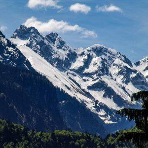 Einoedsbachwiese und Trettachspitze