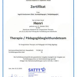 Therapie-/ Pädagogikbegleithundeteam