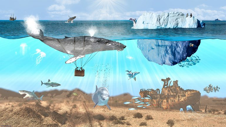Wal im Ozean