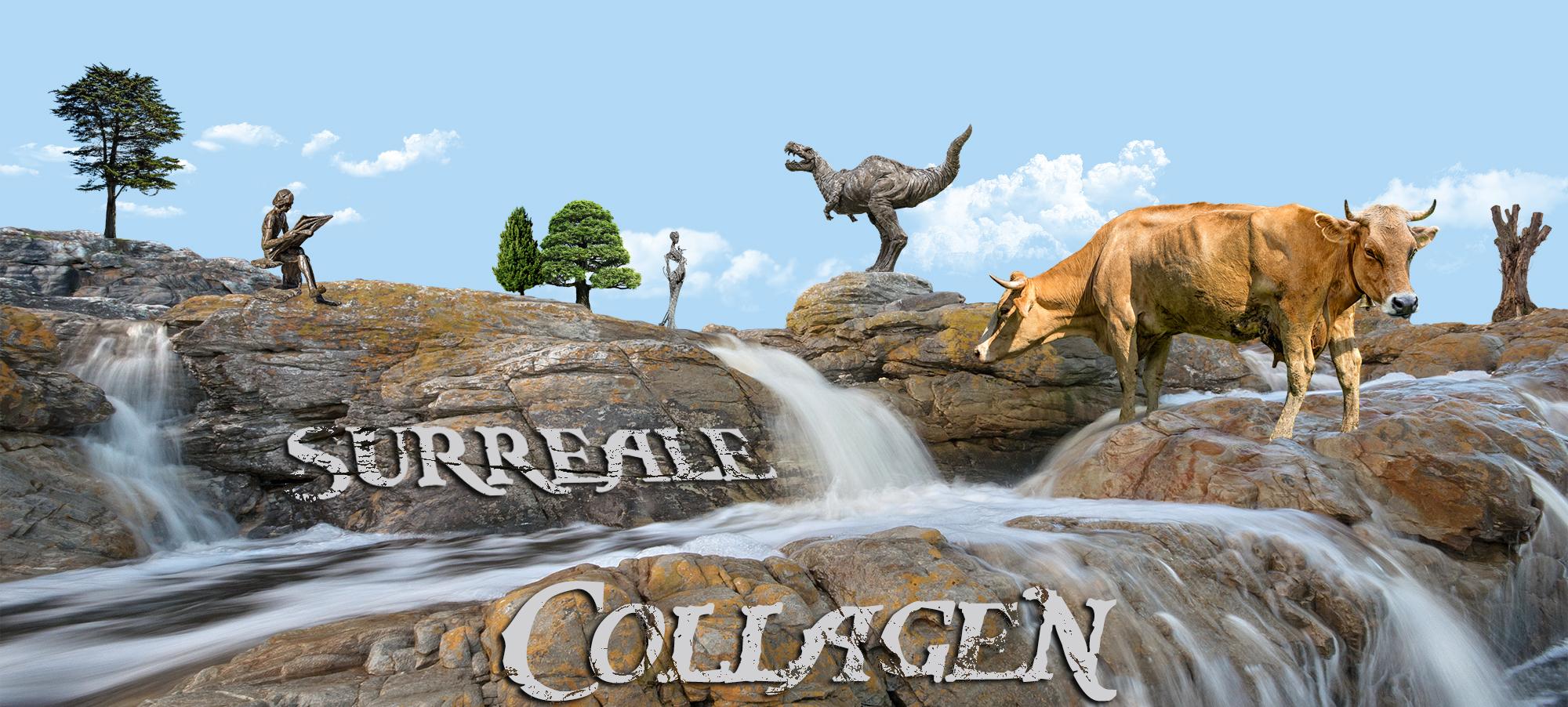 surreale Collagen