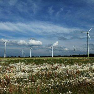 windkraftraeder