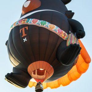 Twente Ballooning in Oldenzaal 2019