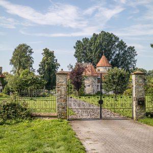 Verna Burg
