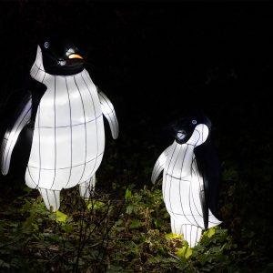 Zoo Lights Osnabrück
